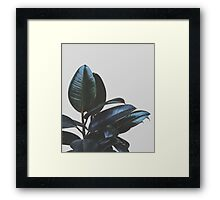 Botanical Art V4 #redbubble #tech #style #fashion Framed Print
