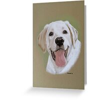 Cody the little champagne Labrador Greeting Card