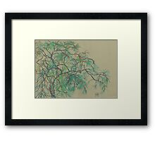 Pine-tree branch, impressionistic art, nature, green shades Framed Print