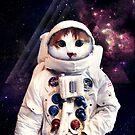 Cosmic Kitty by James McKenzie