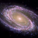 Spiral galaxy Messier 81. by StocktrekImages