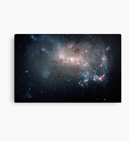 Magellanic dwarf irregular galaxy NGC 4449 in the constellation Canes Venatici. Canvas Print