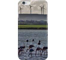Flamingo Dance iPhone Case/Skin