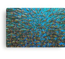 School of Jacks Deep Dreams Canvas Print