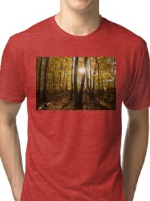 Sunburst - an Autumn Walk in the Golden Forest  Tri-blend T-Shirt