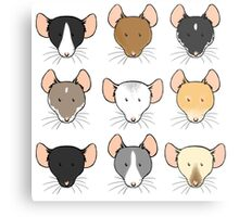 Ratty Faces Metal Print