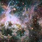 Star formation in the Tarantula Nebula. by StocktrekImages