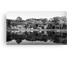 Winter In The Mirror Canvas Print