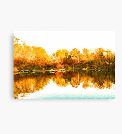Impressions of Forests - Colorful Autumn Mirror Canvas Print