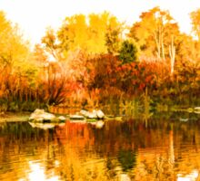 Impressions of Forests - Colorful Autumn Mirror Sticker