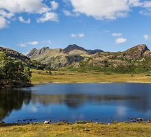 Blea Tarn - The Lake District - England by Ian Wright