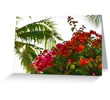Tropical Impressions - Bougainvilleas and Palm Fronds in the Sky Greeting Card