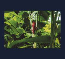 Tropical Impressions - Red Ginger Flower, Framed in Lush Jungle Green Kids Tee