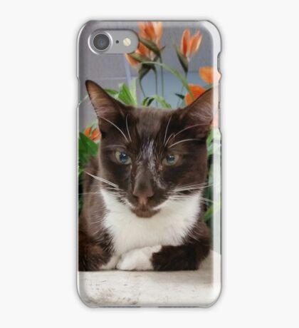 Monkey 2016 iPhone Case/Skin