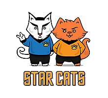 Star Cats Photographic Print