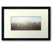High Grass Framed Print