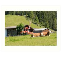 Remote alpine farmhouse photographed in Tirol, Austria  Art Print