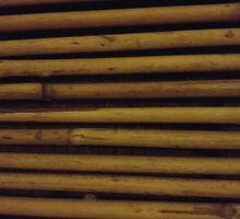 Bits of Bamboo by Renee-LalaLeFay