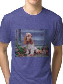 English Cocker Spaniel Tri-blend T-Shirt