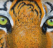 Eyes Of The Tiger by onegenerator
