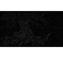 Weirwood tree  Photographic Print