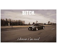 bitch i know im cool Photographic Print