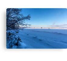 Frozen lake and blue sky Canvas Print