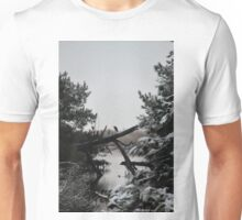 Snowy Heron Perched on Log - Assateague, MD Unisex T-Shirt