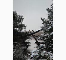 Snowy Heron Perched on Log - Assateague, MD Unisex T-Shirt