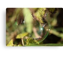 Bubble On Mint Canvas Print