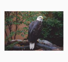 National Aviary Pittsburgh Series - 10 One Piece - Long Sleeve