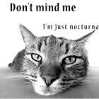 Don't Mind Me by jennyless