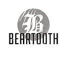 Beartooth Logo by Cats 13