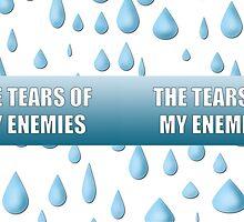 The Tears Of My Enemies by Brinjen