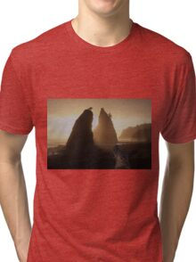 Split Rock Tri-blend T-Shirt