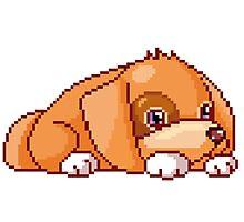 pixel dog Photographic Print