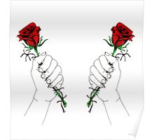 Barbed Wire Roses  Poster