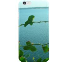 Prick iPhone Case/Skin