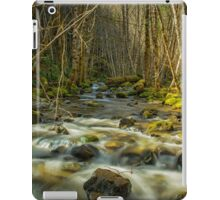 Flowing iPad Case/Skin