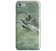 Sea Lions Cavorting in a Green Sea iPhone Case/Skin