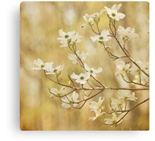 One Spring Day Canvas Print