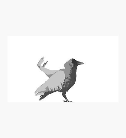 Crow Pose Photographic Print