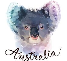 Australian Koala Photographic Print