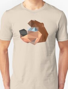 Banjo Polygon T-Shirt