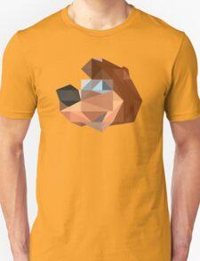 Banjo Polygon T-Shirt