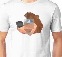 Banjo Polygon Unisex T-Shirt
