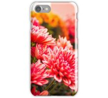 Country Blossoms iPhone Case/Skin