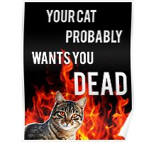 your cat probably wants you dead Poster