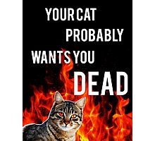 your cat probably wants you dead Photographic Print