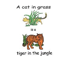 Cat in Grass is a Tiger in the Jungle by Susan S. Kline